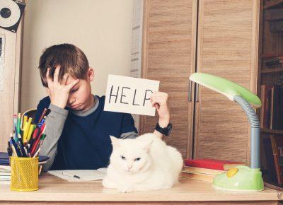 Homework Frustration